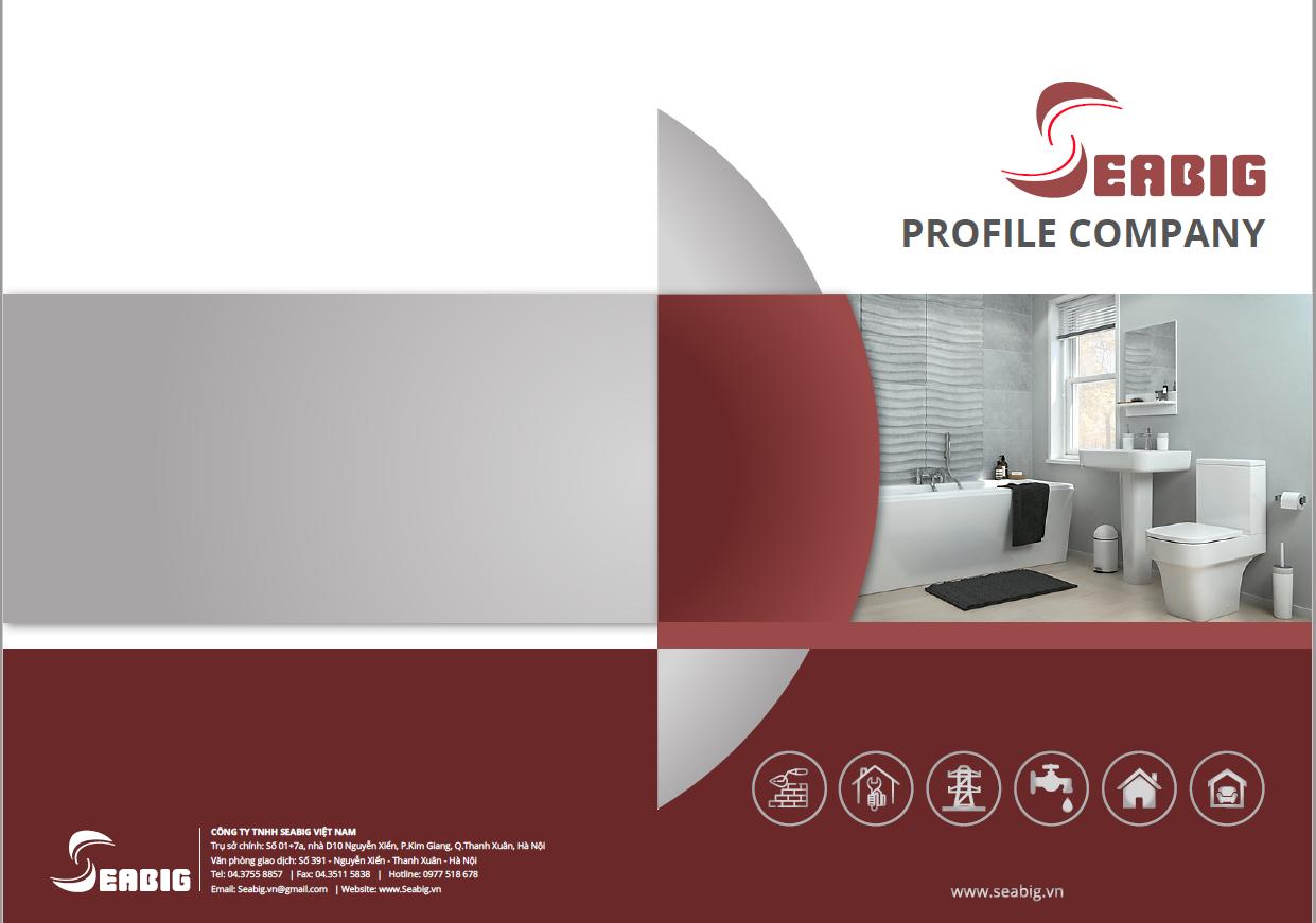 Những lưu ý quan trọng khi thiết kế Profile công ty